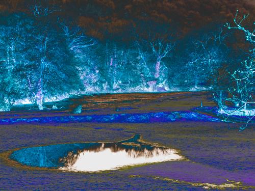 Fairy Ponds